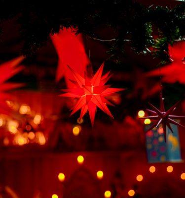 roter-weihnachtsstern
